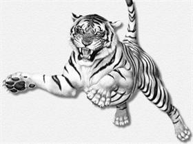 tiger_leaping_ERC.jpg