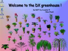 DX Greenhouse