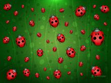 All is Full of Ladybugs