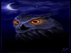 Owl-by blleak