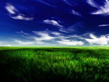 Calm Fields 2