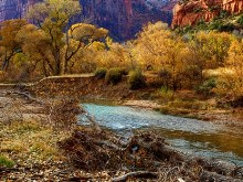 Virgin River Zion N.P.
