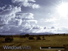Windows Vista Africa