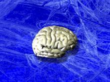 BrainSpinner