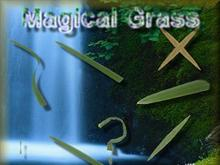 Magical Grass