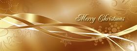 GOLD CHRISTMAS MULTI DISPLAY