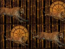 Bamboo Cheetah_varietypak