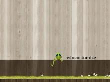 wincustomize wall