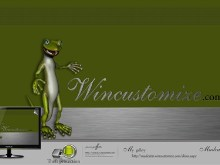 wincustomize lizard