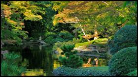 Autumn Light Meditation