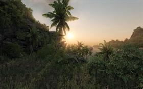Crysis Sunset Dreamscene