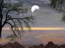 Moonlight Moonbright