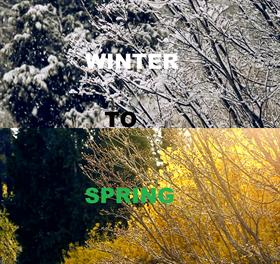 Seasons-Winter to Spring