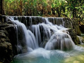 Laos_Forest_Falls