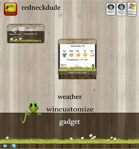 WinCustomize Weather Gadget