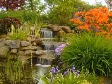 Garden Falls Pond