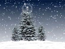 Christmas Trees 3 v2