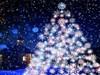 Christmas Night by: AzDude