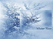 Winter Blues 2pk Logon