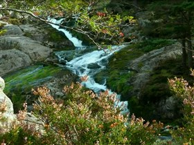 Ogwen falls2