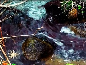 purple rock stream