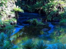 bluewater spring