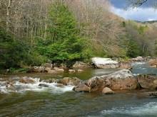 Rocky Forestriver