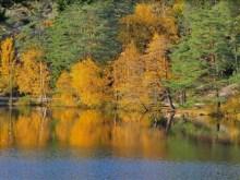 Sweden Autumnlake