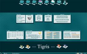 Tigris_SS