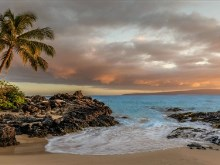 Oahu_Tropical_Cove