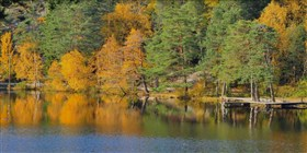 Sweden Autumnlake